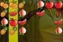 Rakd össze az egyforma gyümölcsöket!