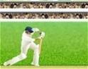 Krikett, kezdőknek!