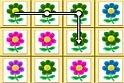 Rengeteg virág között kell megtalálnod az azonos színűeket.