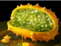 Zöldség - gyümölcs kvíz