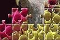 Rengeteg kép közül választhatsz a puzzle játék során, így azt rakhatod ki az online játék alatt ami neked kifejezetten tetszik!