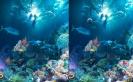 Ismerd meg a tengeralatti élővilágot és közben szórakozz is.