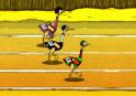 Ismerd meg a nagy madarak versenyét és vegyél is részt rajta!