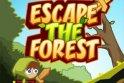 Menekülj ki az erdőből most logikusan!